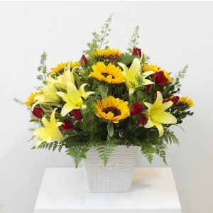 Yellow and Red Arrangement